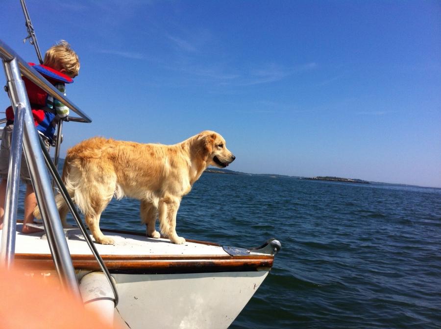 margo-on-boat