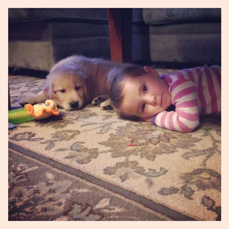 puppy-slide-baby